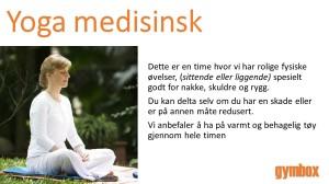Lysbilde58